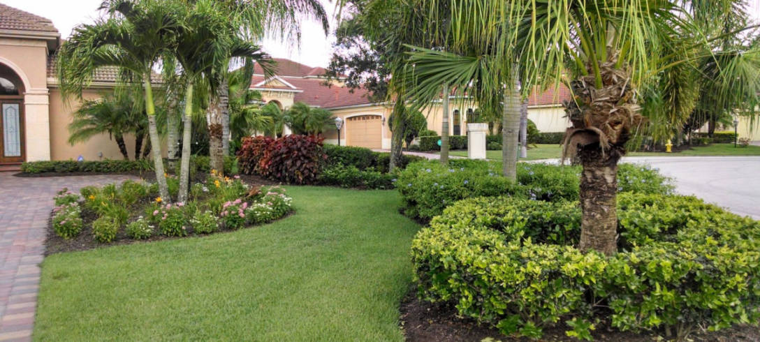 Lakewood Ranch Landscape LLC